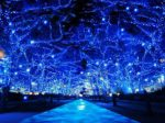 日清フーズが特別協賛する「青の洞窟 SHIBUYA」